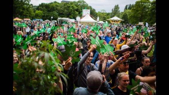 Cannabis Bevrijdingsdag / Cannabis Liberation Day Amsterdam 2017 | AFTERMOVIE