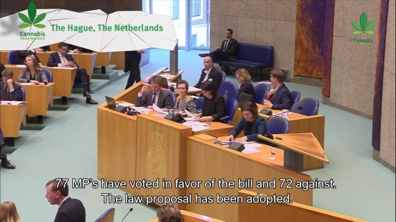 Dutch Parliament votes in favor of cannabis cultivation law proposal