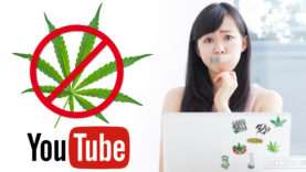 suspending-cannabis-channels-SensiSeeds-1920×1013