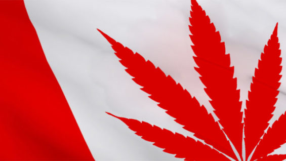 cannabis-legal-canada