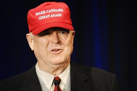 Make Cannabis Great Again | ICBC Berlin | Cannabis News Network