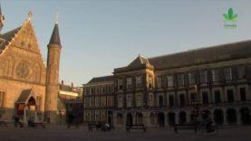 Het Nederlandse gedoogbeleid is failliet | Miniserie | Deel 2