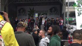 NYC Cannabis Parade 2016  – Global Marijuana March