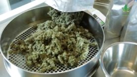 Updates on regulating medicinal cannabis and more