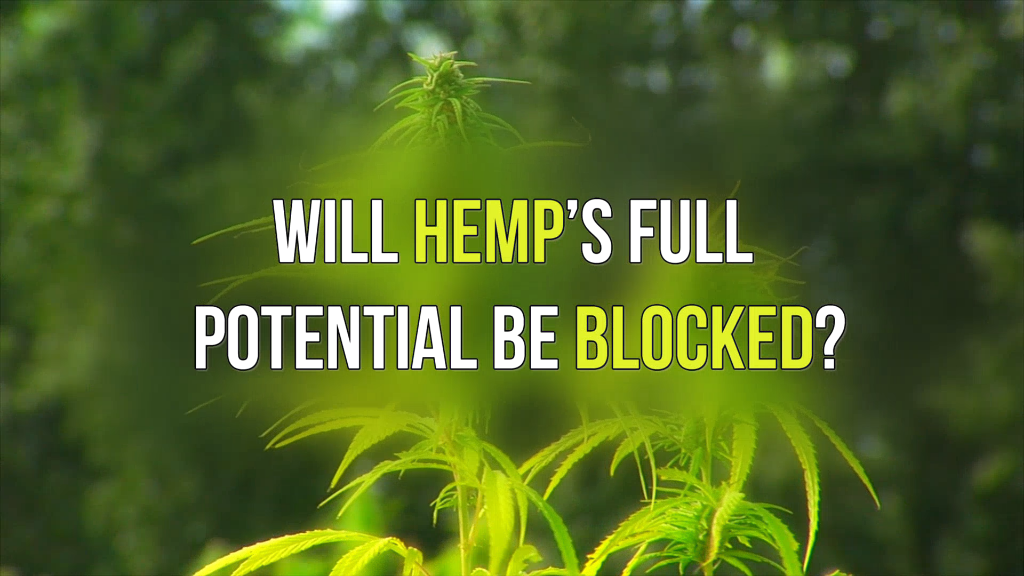 potential of hemp