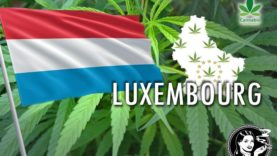 Luxembourg-foto-thumb-overlay720-compressor