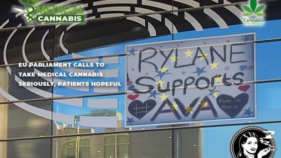 EU parliament calls to take medical cannabis seriously, patients hopeful