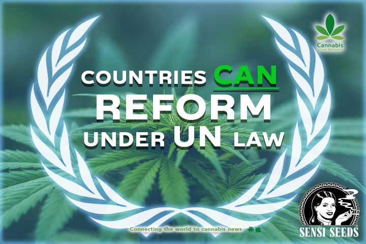 Countries can reform under UN law
