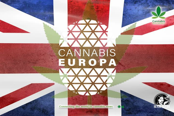 The future of cannabis in the EU versus the Americas