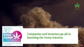 Hemp, booming business, more difficult than you think.