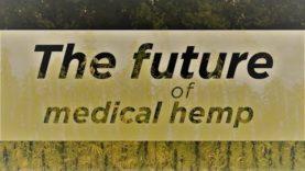 The future of medical hemp